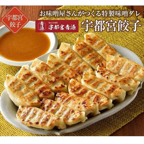 青源の餃子3箱セット 冷凍