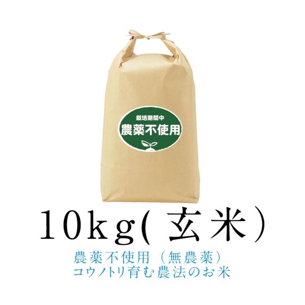 令和元年新米【農薬不使用(無農薬)】こうのとり米10kg(玄米)