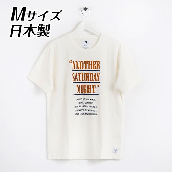 日本製 ドライ天竺TシャツMサイズ 半袖 白 適度な伸縮性で着心地抜群 DS2-1003-M-WHT