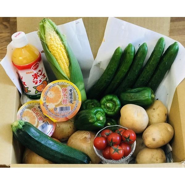 産地直送【夏の特選パキパキ野菜セット】◆愛媛県産◆