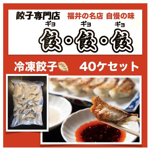 福井の名店 餃・餃・餃(ギョギョギョ)冷凍オリジナル餃子