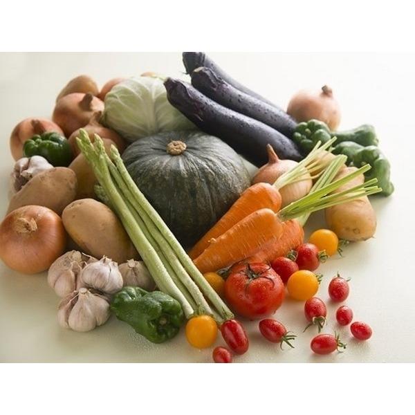 シルバー農園から『旬野菜、果物のお届け便、夏version』