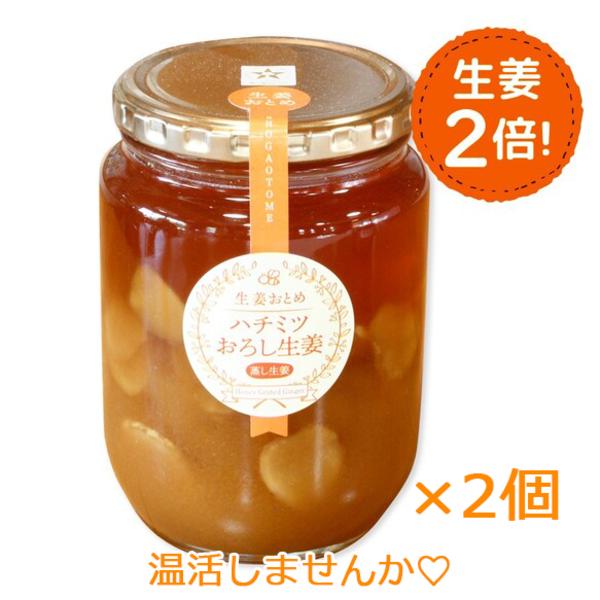 【無添加】【生姜2倍】ハチミツおろし生姜お徳用850g×2個セット