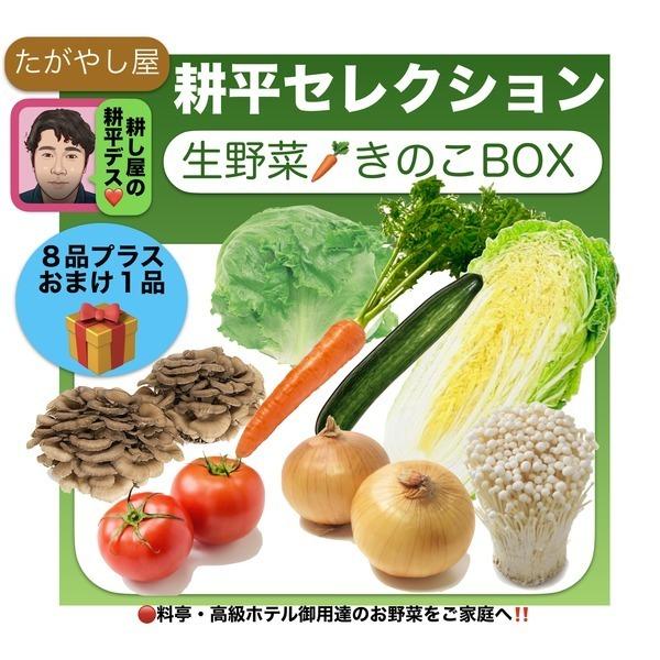 耕し屋耕平セレクション 生野菜・きのこBOX